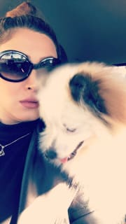 Caring pet sitter(I love pets)