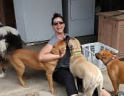 Friendly, reliable, honest & caring animal lover, working from home