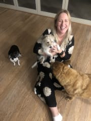 Caring Pet Sitter Northern Beaches