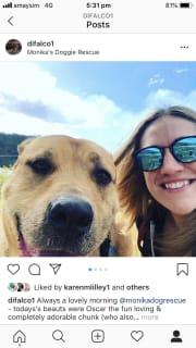 Dani the Devoted Dog Lover!