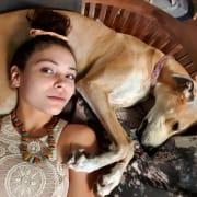 Safe n Sound Pet Care ??