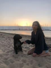 6 years experience, loving, trustworthy pet sitter!