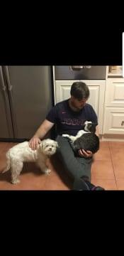 The best pet sitter going around!