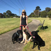Pet lover in eastern suburbs Melbourne (Glen Waverley)