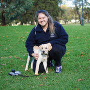 Honest, Trustworthy and Experienced Dog Trainer