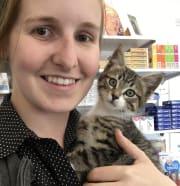 Qualified vet nurse/ Animal lover