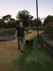 Experienced and reliable dog trainer