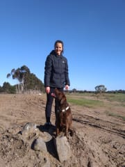 Experienced & Caring Dog Walker/Minder - Maylands