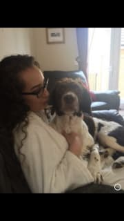 Reliable and Loving English Pet Sitter