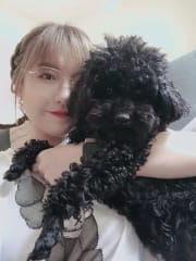 Dog lover and also raising a toy poodle
