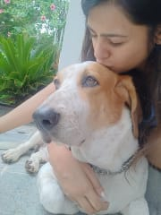 Loving , caring and reliable pet sitter