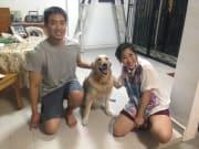 Dog Lover Providing You Awesome Housesitting/Daycare/Walking Services