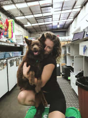 Experienced and reliable pet sitter and dog trainer.