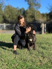 Experienced pet sitter,loving, caring ,energetic, lots of references.