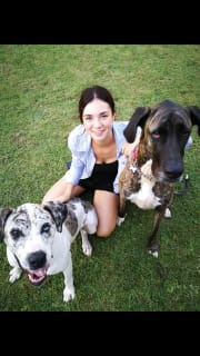 Young and full of time and love for animals! Nudgee
