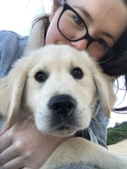 Lover of furry friends, reliable, energetic, friendly pet sitter