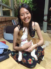 Lovable pet family for your furry companion in Highett