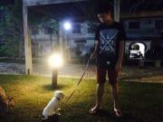Dog Lover. Pet Lover. Animal Lover.