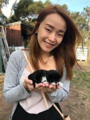 Responsible & fun Pet Sitter!