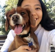 Animal lover, enthusiastic, trustworthy (St Lucia and surrounds)