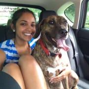 Caring DVM student pet sitter
