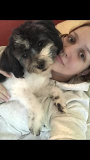 Loving, Caring and Reliable Pet Sitter