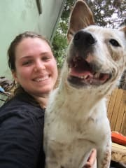 Reliable and loving pet sitter located in Bronte Beach!