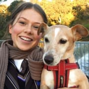 Vet nurse, pet owner, living in Clifton Hill