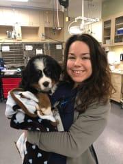 Animal obsessed, veterinary student in Redfern