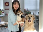 Vet student, a loving and caring pet sitter in Southbank