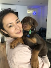 Animal loving pet sitter in the Bayside area
