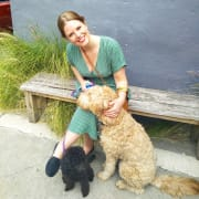 Full-time professional pet-sitter & dog walker with 10 years experience.