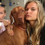 Dog enthusiast in Bondi Beach