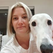 PAT THE DOG PET SERVICES Greyhound Specialist!
