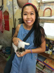Fun-loving, reliable and caring pet sitter
