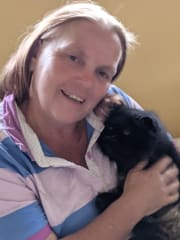Reliable Punctual Over 40 years experience with Animals