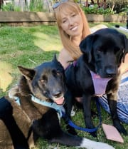 Reliable & caring pet sitter