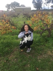 Reliable and Friendly Pet Sitter