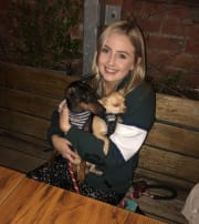 Friendly and reliable dog sitter living in St Kilda