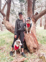 Qualified, experienced dog nerd in Adelaide!