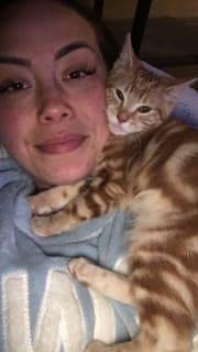 Crazy Cat Lady who cares