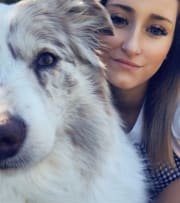 Reliable, Understanding, Trustworthy, Calm, Flexible & Genuine love for animals