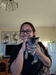 Dependable, playful, and caring local sitter (Canberra, ACT)