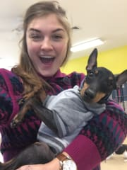 Veterinary Student and reliable pet sitter