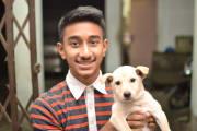 Dependent and loving pet sitter/walker.