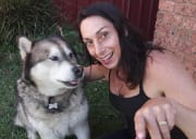 Genuine, honest, caring dog lover home 24/7 in North Ryde