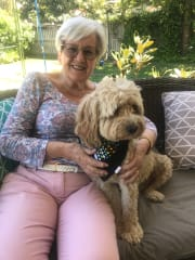 Absolutely reliable and pet loving Pet Sitter with vast experience