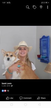 Crazy dog lover, reliable and friendly pet sitter