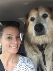 Experienced, caring and reliable dog sitter/walker