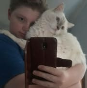 reliable and caring sitter, honest and outgoing, putting pets first
